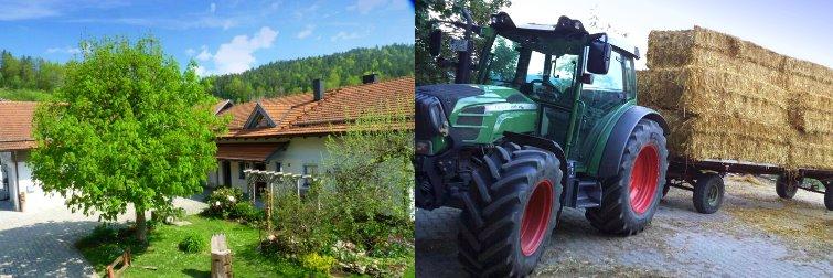 Ferienhof Schessl - kinderfreundlicher Bauernhof im Bayerischen Wald