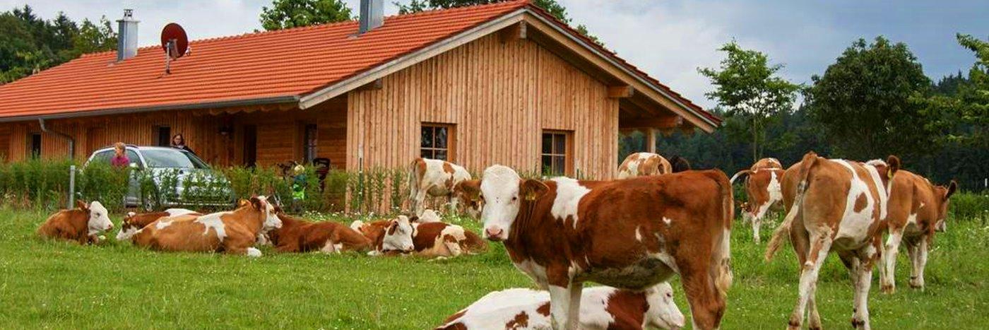 Bauernhofurlaub bei Regensburg Familienferien in der Oberpfalz