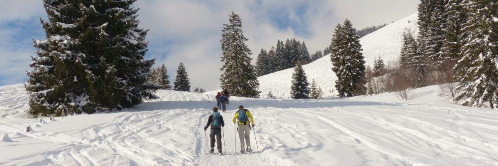 Bayerischer Wald Langlaufurlaub in Bayern Langlaufgebiete