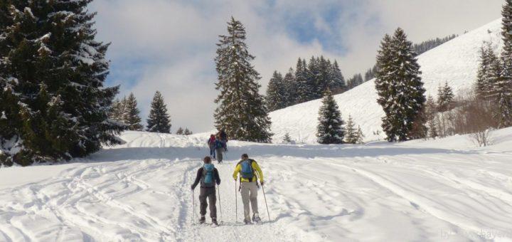 Bayerischer Wald Schneeschuhtouren in Bayern ...