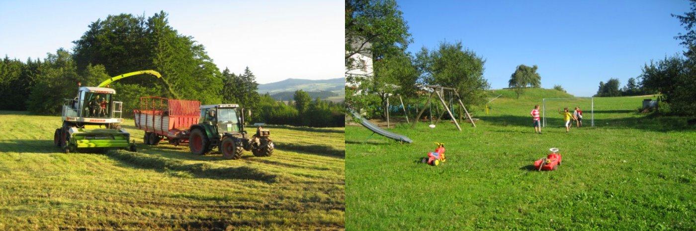 Bauernhof 1000 jährige Linde Ferienwohnungen bei Rötz und Schönsee in Tiefenbach
