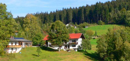 schreder-lindberg-pension-nationalpark-bayerischer-wald-landschaft