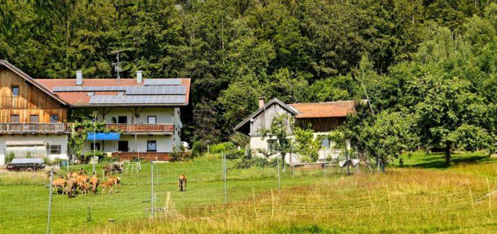 spiegelau-bauernhofurlaub-nationalpark-bayerischer-wald-ferienhaus-ansicht