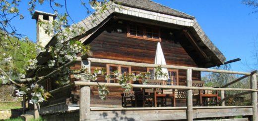 sellmayer-spiegelau-forsthütte-nationalpark-bayerischer-wald