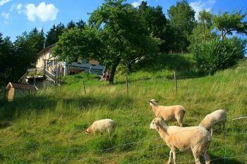 große Ferienwohnung für Gruppenreisen Deutschland Workshops und Tagungen