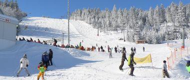 Winter im Bayerischen Wald - skigebiet-arber-skifahren-panorama-380