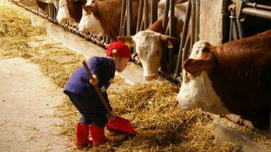 Bauernhof Urlaub mit Baby in Bayern - Kinderspielplatz