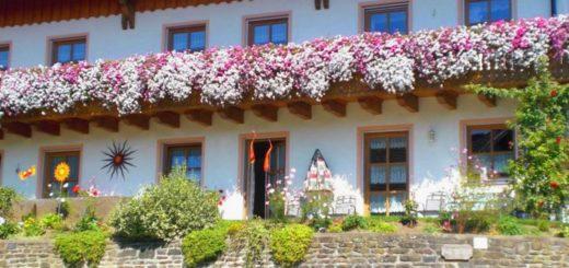 sponfeldner-bauernhofurlaub-chamerau-ferienwohnungen