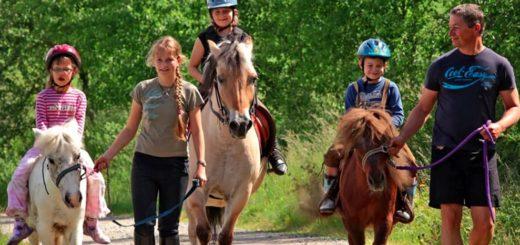 sponfeldner-familienbauernhof-bayerischer-wald-reiturlaub