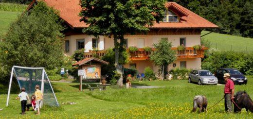 steinmühle-bauernhofurlaub-reitmöglichkeit-ferienhaus-bayerischer-wald
