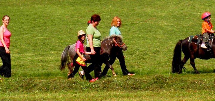 steinmühle-erlebnisbauernhof-bayerischer-wald-ponyreiten-familienurlaub