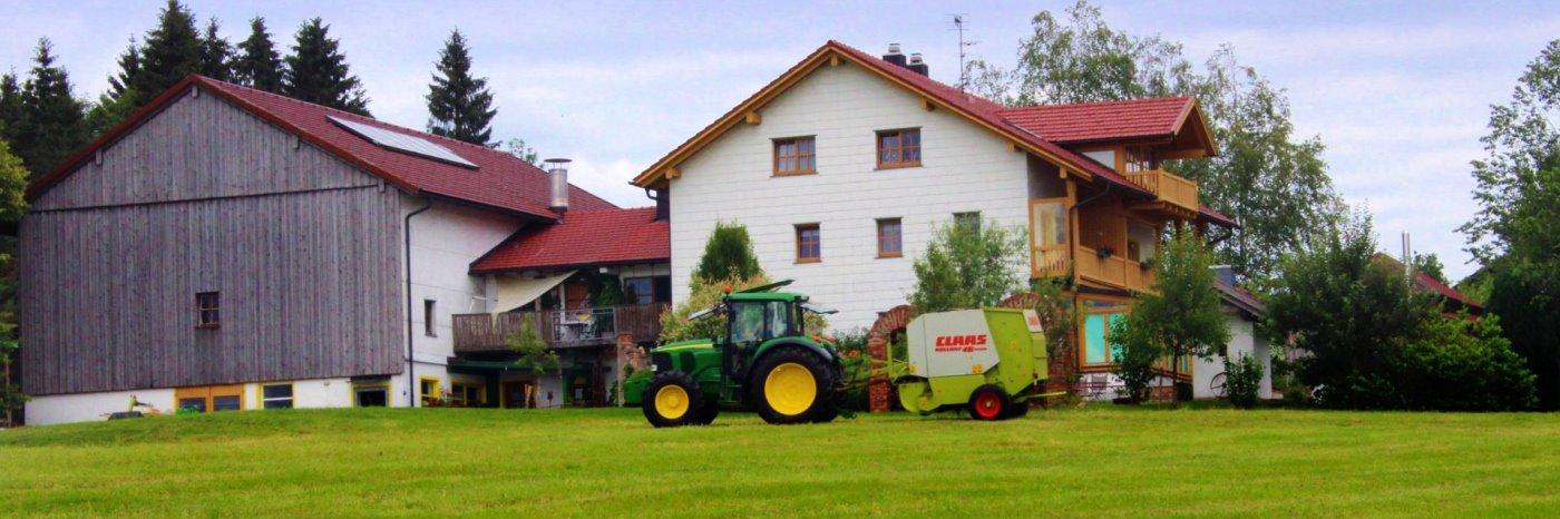 Bauernhof Urlaub im Dreiländereck bei Neureichenau am Dreisessel