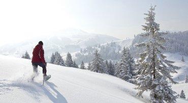 thula-sporthotel-winterferien-deggendorf-schneeschuhtour