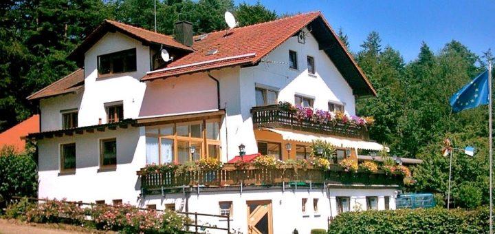waldesruh-amberger-hotel-furth-pension-bayerischer-wald