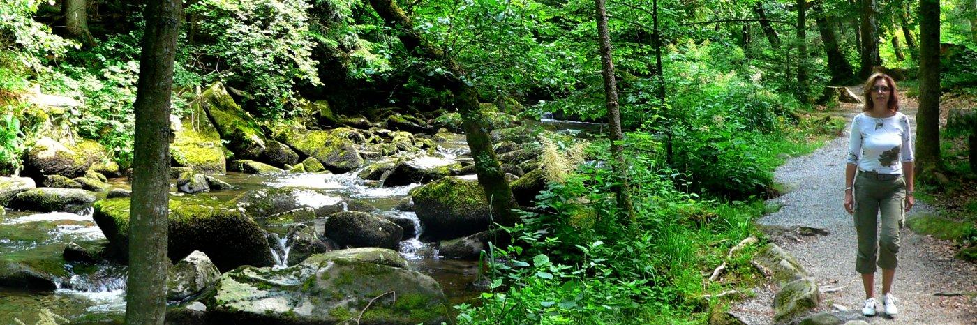 Bilder vom Wandern Naturerlebnis Saußbachklamm in Waldkirchen