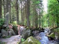 Ausflugstipp Bayerischer Wald