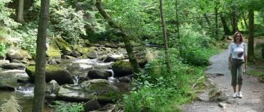 waldkirchen-saussbachklamm-wandergebiet-wanderurlaub-waldweg-panorama-380