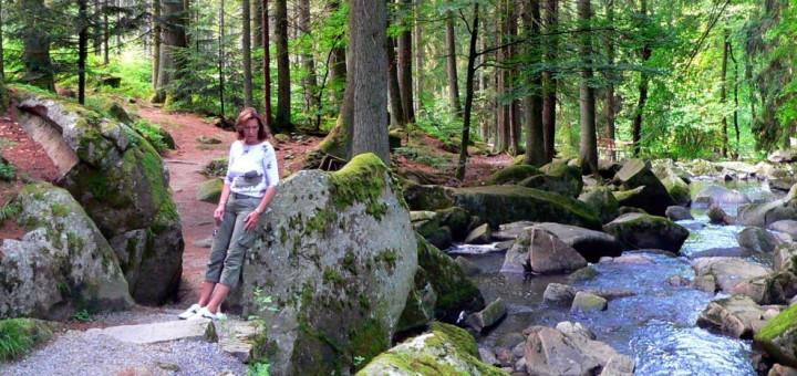 Ausflugsziele Waldkirchen Sehenswürdigkeiten Saussbachklamm Bayerischer Wald