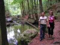 Bayerischer Wald Wanderurlaub