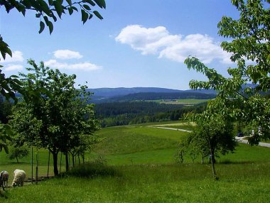 weghofer-ferienhaus-viechtach-aussicht-landschaft