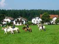 Wellness Bauernhof in Kirchberg