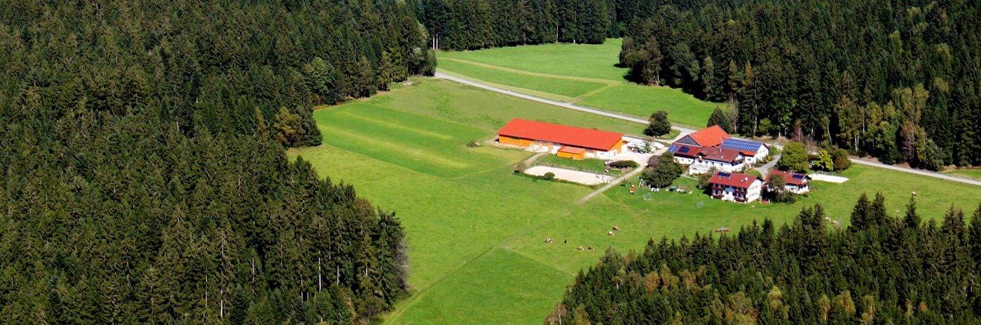Bauernhof mit Wellness und Reiten im Bayerischen Wald bei Regen Deggendorf