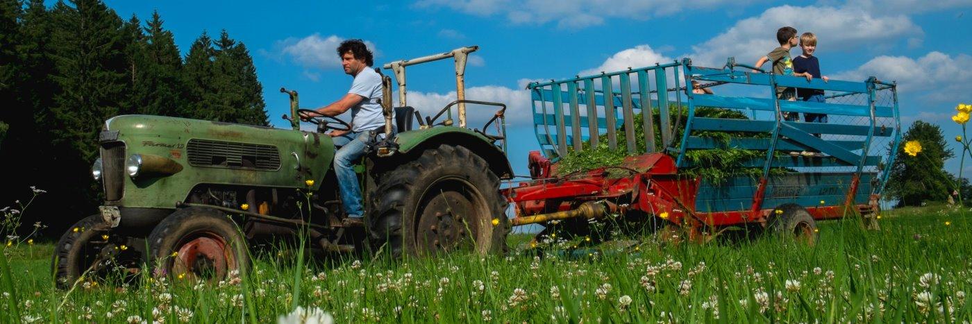 Bayerischer Wald Ferienhof für Kinder Erlebnis Ferienwohnung am Bauernhof mit Wellness