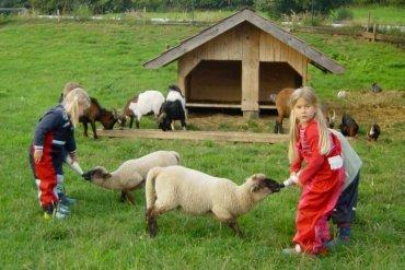 Bauernhof Wieshof Kirchberg Kinderangebote Spiele