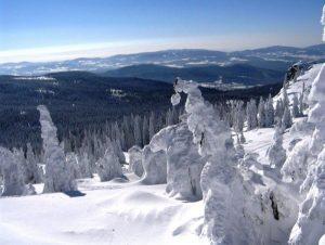 winterurlaub-bayerischer-wald-berge-aussicht