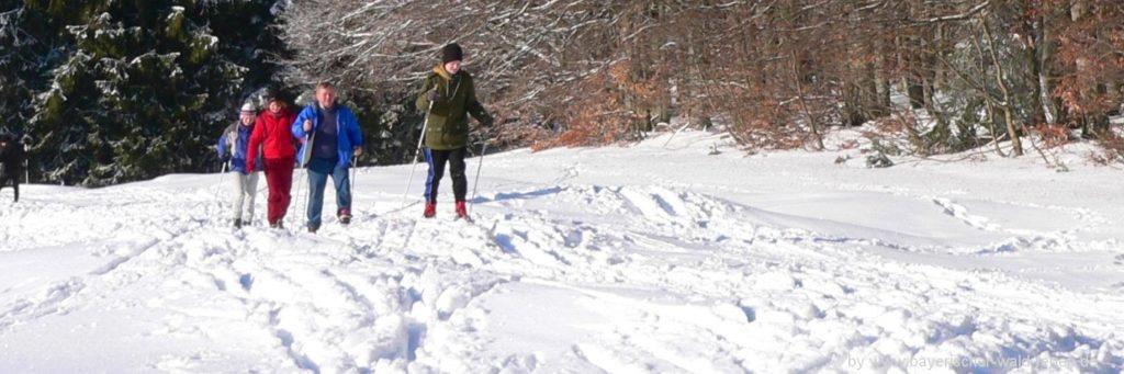 Bayerischer Wald Winterurlaub, Skiurlaub und Langlaufurlaub