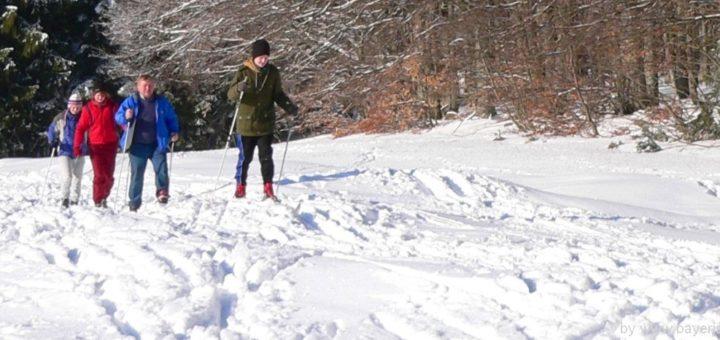 winterurlaub-bayerischer-wald-langlaufurlaub-bayern-langlaufen