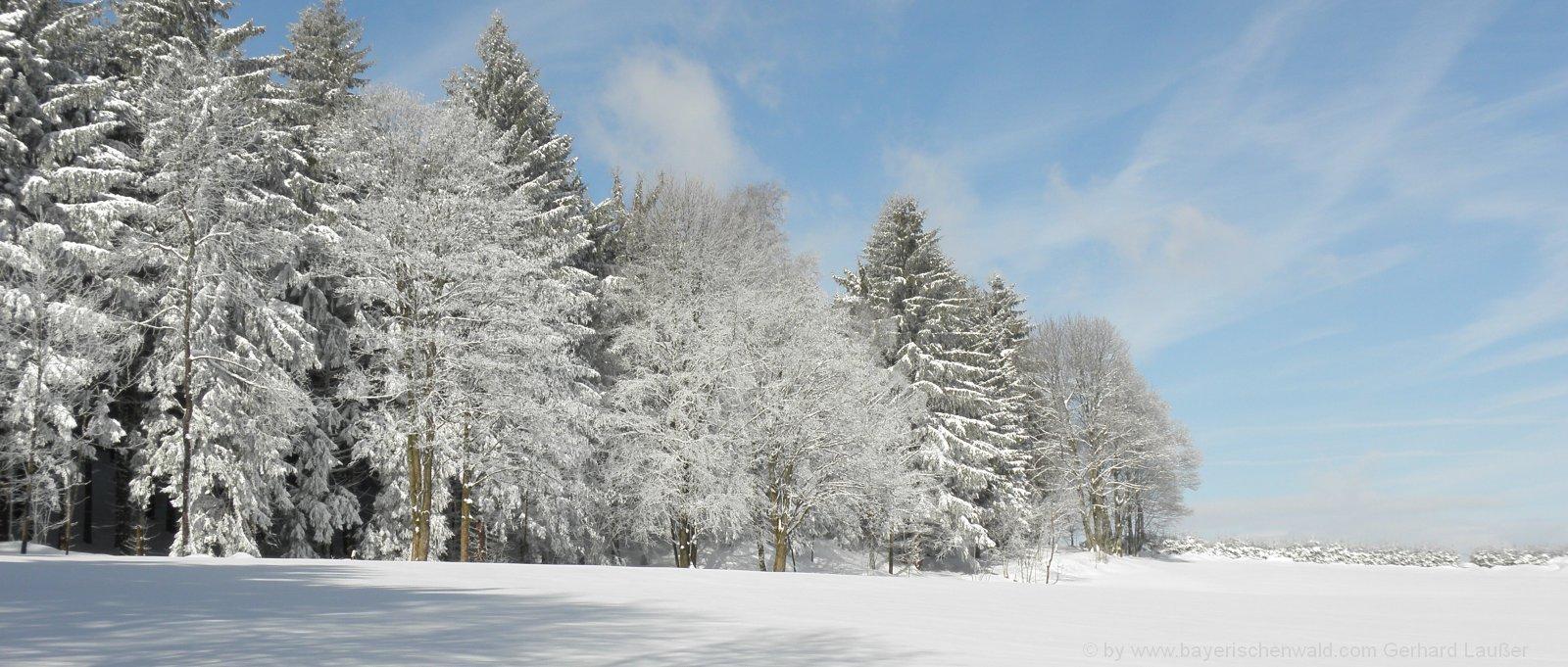 winterurlaub-bayerischer-wald-schnee-wandern-langlaufen