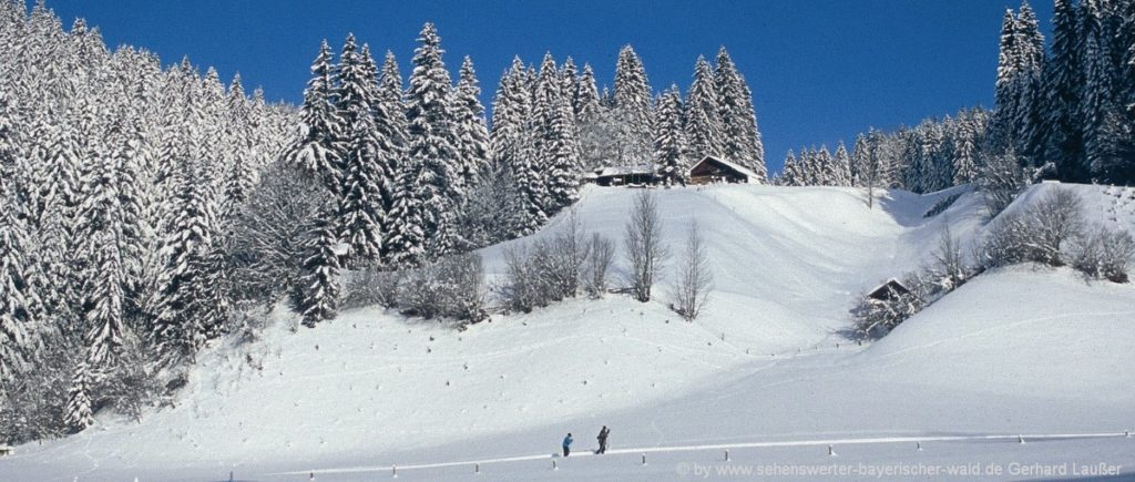 Urlaub im Winter in Bayern - Skifahren und Langlaufen im Bayerischen Wald