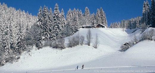 winterurlaub-bayerischer-wald-skifahren-langlaufen-winter-wandern