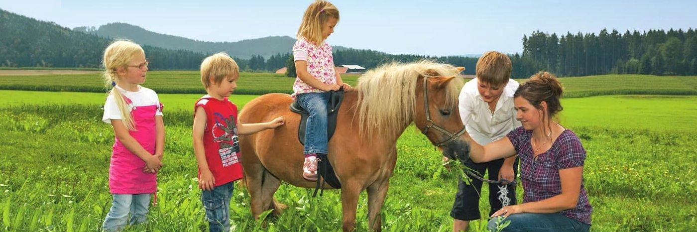 Reiturlaub und Kinder und Familienurlaub im oberen Bayerischen Wald