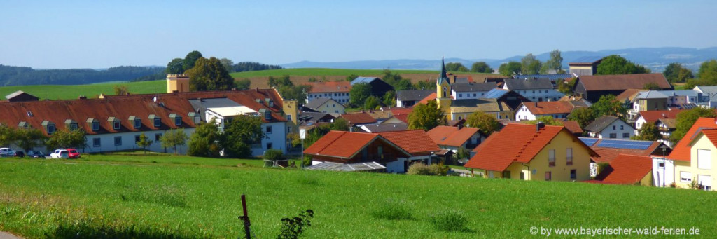 Gasthof in Chamerau & Runding Pension in Zandt Waffenbrunn Willmering