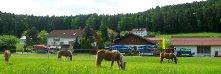 zankl-ferienhof-reiterhof-bayern-hauptansicht-221