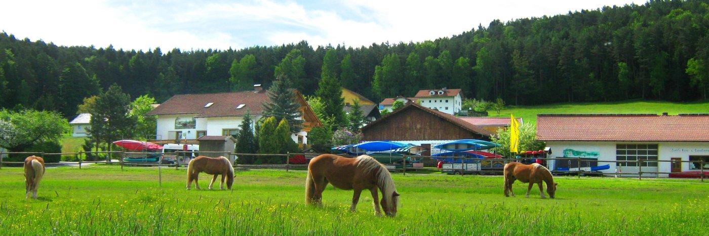 Ferienwohnungen in Blaibach Unterkunft am Regen Fluss bei Miltach